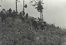 A group of soldier charging up a hill with a flag carrier in lead