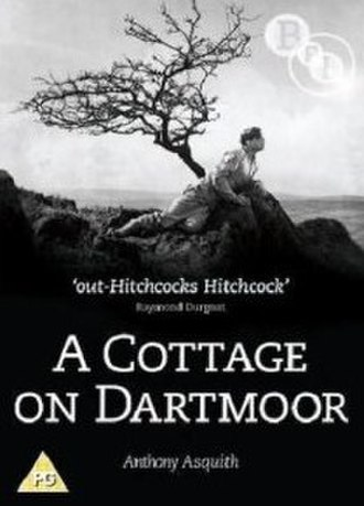 A Cottage on Dartmoor - UK DVD cover