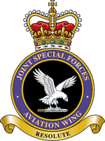 Joint special forces aviation wing.png