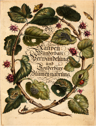 Title page of The Caterpillars' Marvelous Transformation and Strange Floral Food, first volume, published 1679 Maria Sibylla Merian Der Raupen wunderbare Verwandelung und sonderbare Blumennahrung Band 1.png