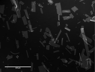 Peptoid nanosheet - Image: Peptoid Nanosheets, fluorescent microscopy, June 2013