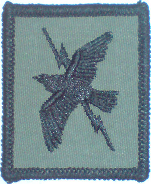 No. 90 Signals Unit RAF - The Old Tactical Recognition Flash of TCW