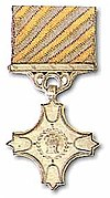 Vayusena Medal.jpg
