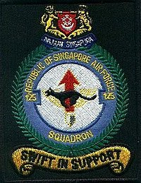 125Sqn shoulder patch.jpg