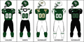 CIS UofS Jersey 2011.png