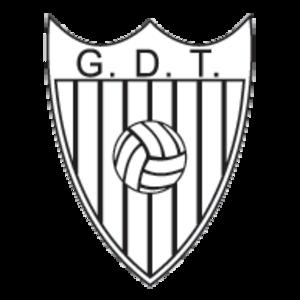 G.D. Tourizense - Image: GD Tourizense