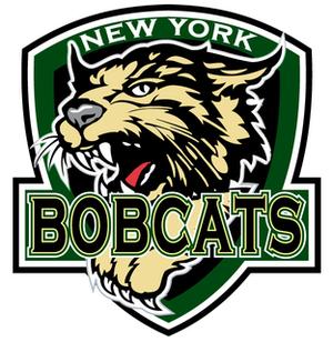 New York Bobcats - Image: NY Bobcats logo
