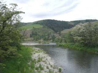 Potlatch River river in Nez Perce and Latah counties in Idaho, United States