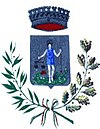 Coat of arms of Sant'Angelo del Pesco