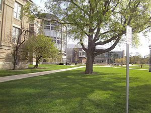 Gwendolyn Brooks College Preparatory Academy - Image: Welcome Brooksnew View
