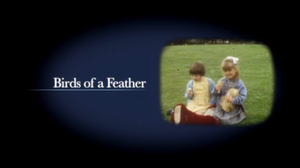 Birds of a Feather - Image: Birds of a Feather 2014 Title Card