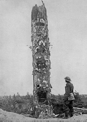 Military tactics - German World War I observation post disguised as a tree.