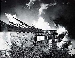 250px-GoldenBough2onfire Carmel Locals