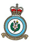 RAF Finningley badge.jpg