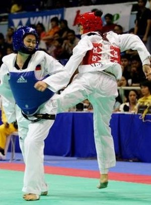Taekwondo at the 2005 Southeast Asian Games
