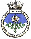THORN badge-1-.jpg