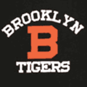Brooklyn Dodgers (NFL) - Brooklyn Tigers logo
