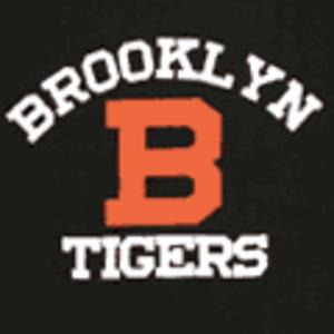 Brooklyn Dodgers (NFL) - Brooklyn Tigers logo