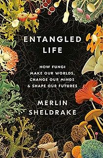 <i>Entangled Life</i> 2020 book