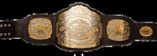 GHC Heavyweight Championship Professional wrestling championship