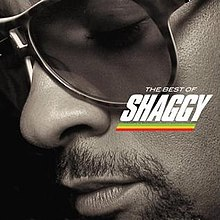 The Best of Shaggy.jpg