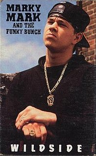single by Marky Mark and the Funky Bunch