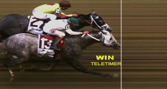 2016 Belmont Stakes - Photo finish at the Belmont Stakes