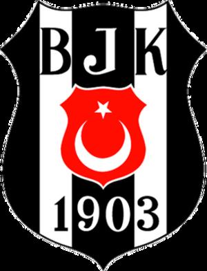 Beşiktaş J.K. (women's football) - Image: Besiktas hqfl logo