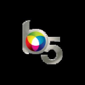 Bibble (software) - Image: Bibble 5 Logo