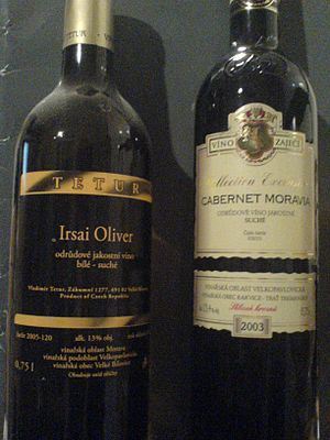 Czech wine - Two bottles of Moravian wine (an Irsai Oliver and a Cabernet Moravia), showing the usual labeling for geographical origin