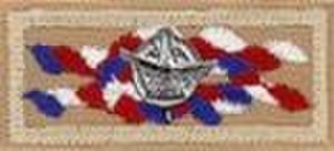 Outstanding Eagle Scout Award - Eagle knot with device