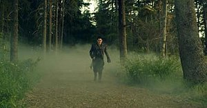 """If I Had You (Adam Lambert song) - Lambert, wearing a black coat, black boots and gloves while walking in the forest by daylight in the music video for """"If I Had You""""."""