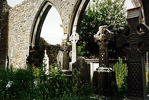 Kilcrea Friary - Friary church interior