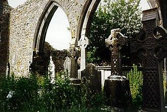 Kilcrea Friary - Friary church interior