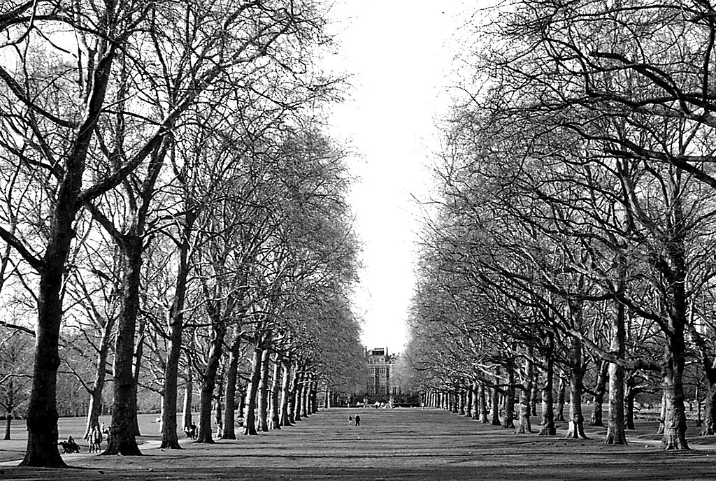 green park black personals Photo about pretty black teenage girl standing in the park with her arms crossed image of female, multi, away - 6325516.