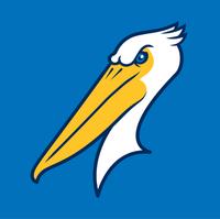 Team Logo Cap Insignia