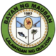 Official seal of Mauban