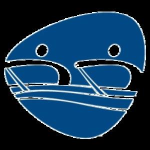 Rowing at the 2016 Summer Paralympics - Image: Rowing, Rio 2016 (Paralympics)