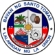 Official seal of Santo Tomas