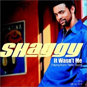 It Wasn't Me - Image: Shaggy wasn't me
