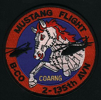 135th Aviation Regiment (United States) - Colorado Mustang Flight