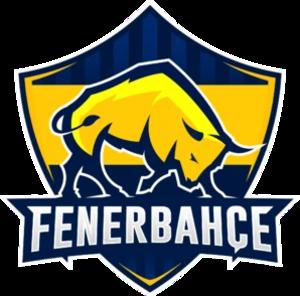 1907 Fenerbahçe eSports - Image: 1907FBespor