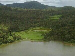 Honnamana Kere - Landscape around Honnamana Kere