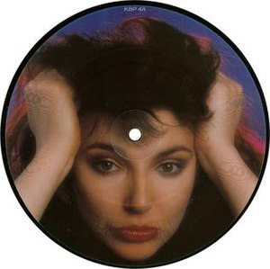 The Big Sky (song) - Image: Kate Bush The Big Sky picture disc