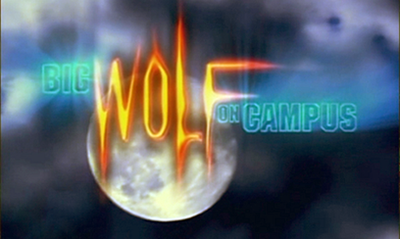 Picture of a TV show: Big Wolf On Campus