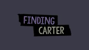 Finding Carter - Image: Finding Carter intertitle
