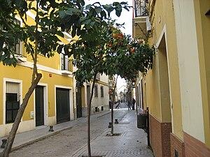 Macarena, Seville - Fray Diego street
