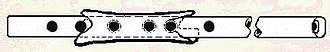 Divje Babe Flute - Illustration of the diatonic flute by Bob Fink.