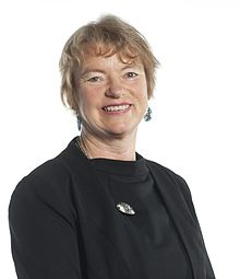 Janet Rice 2013 Campaign Photo.jpg