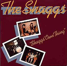 Shaggs Own Thing reissue.jpg